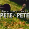 The Pete & Pete Mix