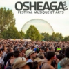 get ready for Osheaga 2013