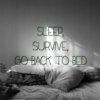 Sleep, Survive, Go Back To Bed