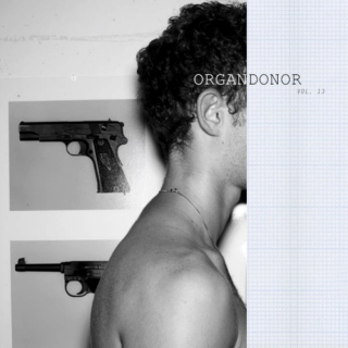ORGANDONOR, Vol. 13