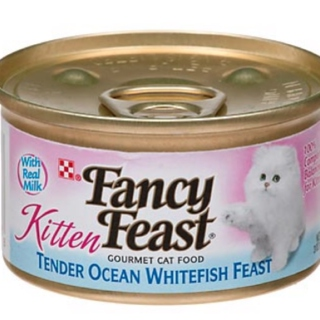 Sheli Kat's Fancy Feast