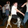 dance party for one