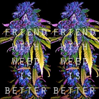 A friend with weed is better
