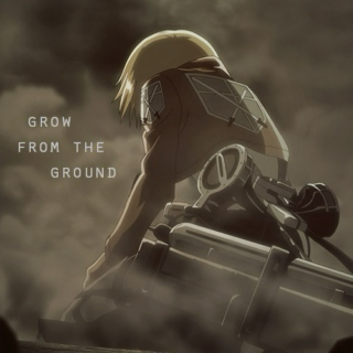grow from the ground