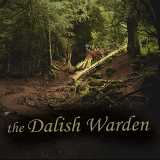 The Dalish Warden