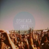 Osheaga 2013 Friday Survival Guide