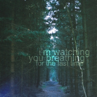 I'm watching you breathing for the last time.