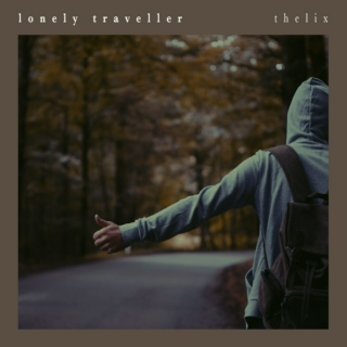 Lonely Traveller