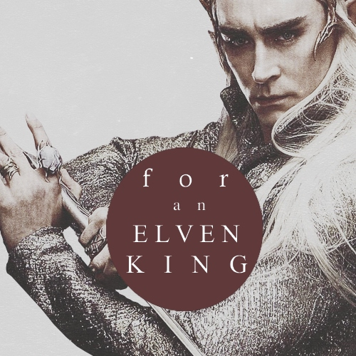 for an elvenking