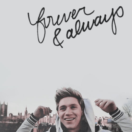 niall horan // forever & always