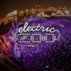 Electric Zoo 2013