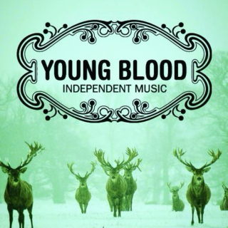 Young Blood | Independent Music August 2013
