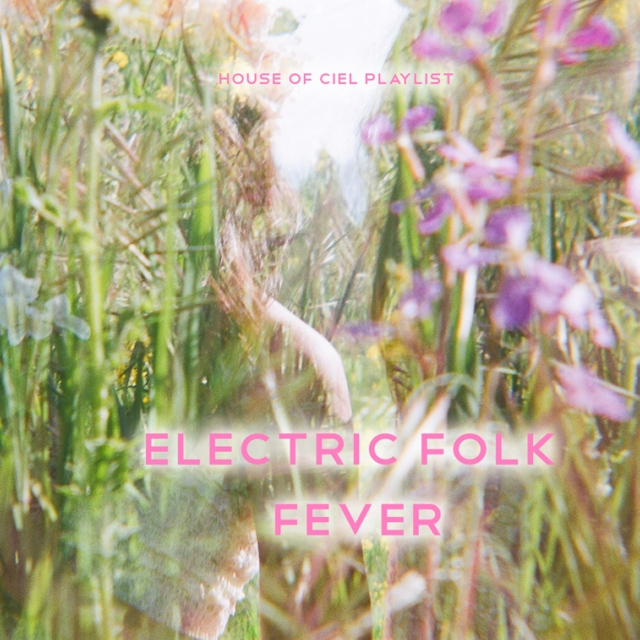 Electric Folk Fever