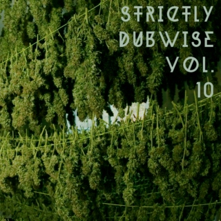 Strictly Dubwise Vol. 10: Dub 45's
