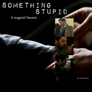 Something Stupid a Megstiel Fanmix