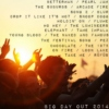 Big Day Out 2014