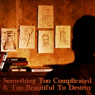 Something Too Complicated & Too Beautiful To Destroy [an Elementary Season 1 Finale mix]