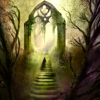 Into the Faery Wood