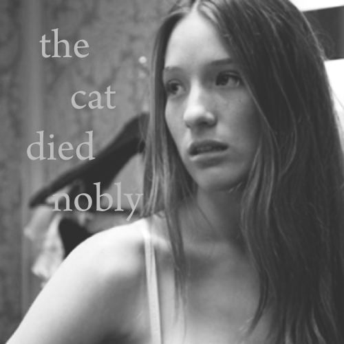 the cat died nobly