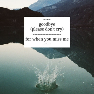 goodbye (please don't cry)