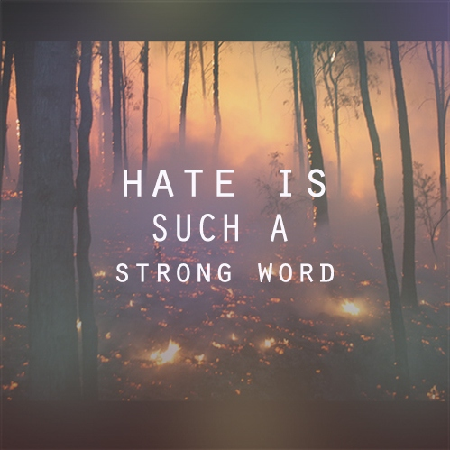 hate is such a strong word.