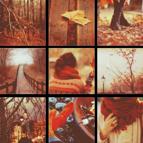 """Autumn is the hardest season. The leaves are all falling, and they're falling like they're falling in love with the ground."""