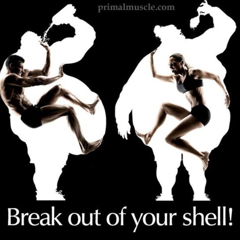 Break out of your shell!