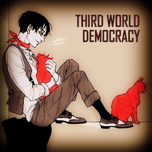 THIRD WORLD DEMOCRACY