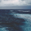 theres so much beauty in a storm