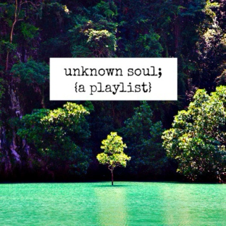 unknown soul;