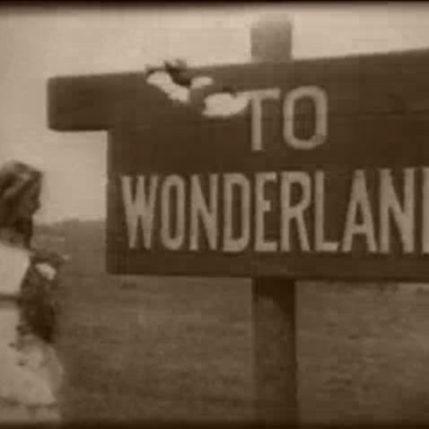 To Wonderland (And Back Again)