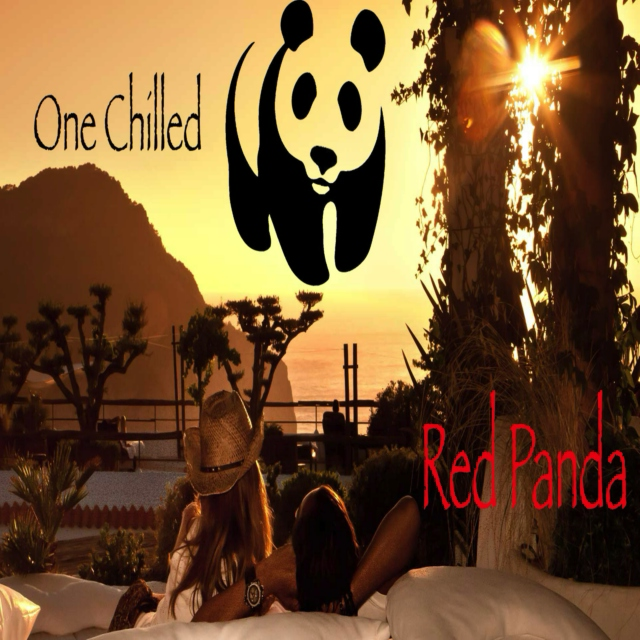One Chilled Red Panda