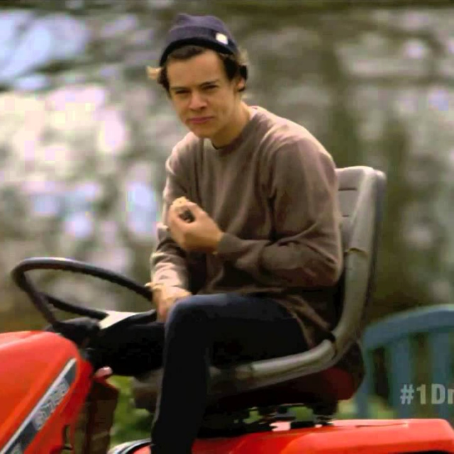 Country Evening With Harry