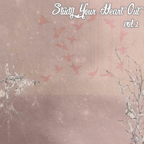 Study Your Heart Out vol.2