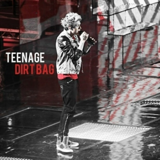 I'm Just A Teenage Dirtbag, Baby
