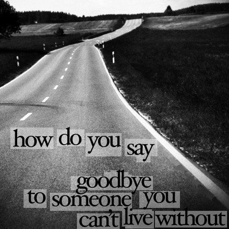 The Goodbye's
