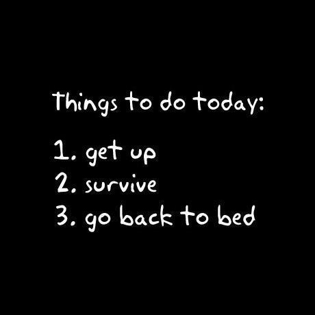 Life's Survival Guide