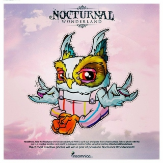 Nocturnal Wonderland 2013