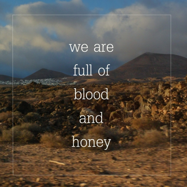 we are full of blood and honey