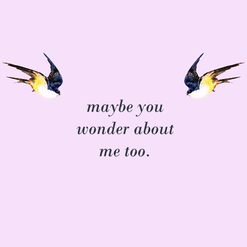 maybe you wonder about me too.