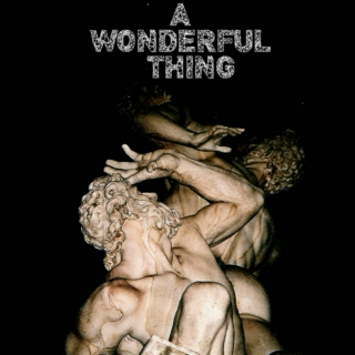 A Wonderful Thing