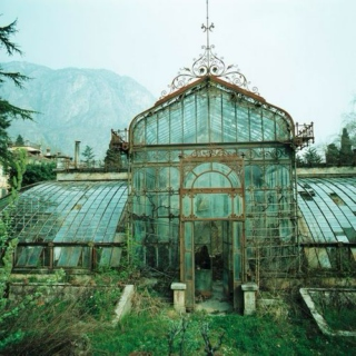 Navigating the Greenhouse
