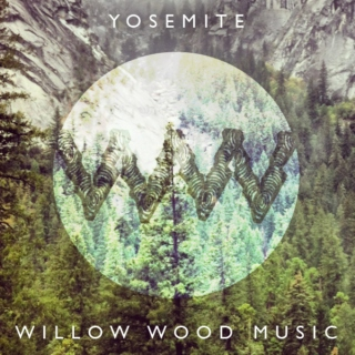 Willow Wood: Yosemite