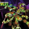 2012 Teenage Mutant Ninja Turtle Mix