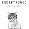 Indietronic