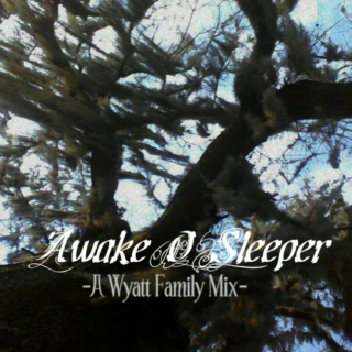 Awake O Sleeper
