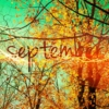 September Favorites (Bands Pt.4)