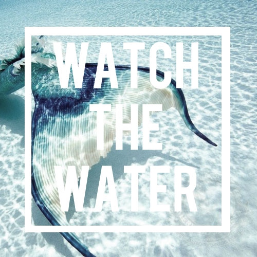 watch the water.