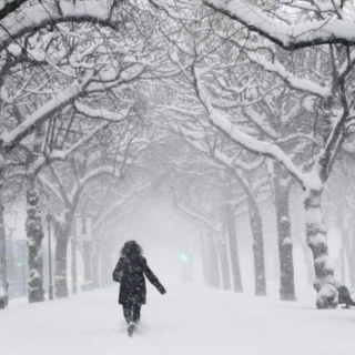 love in the time of winter