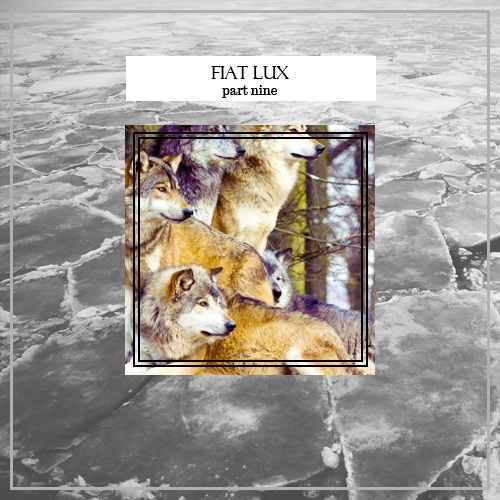 Fiat Lux - Part Nine (She-Alphas and Their Packs)